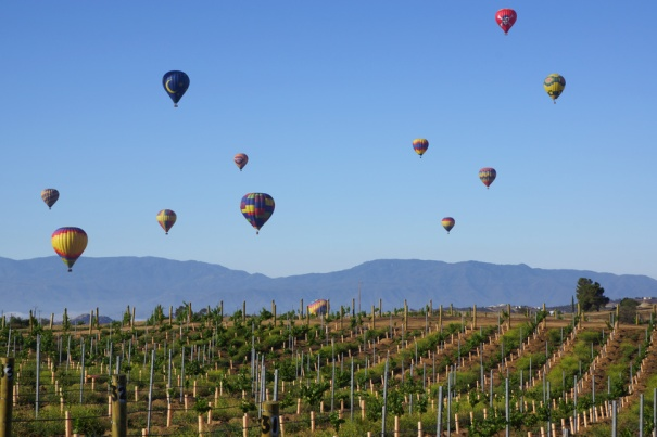 Balloon and Wine Festival in Temecula, California