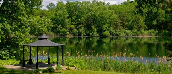 Gazebo__Lake21springlake