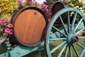 French wine village vineyard wine barrels and cart.